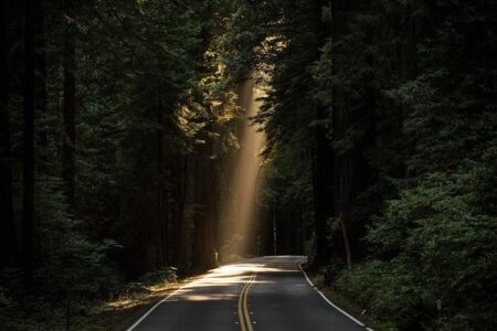 Putting the pre-pack into practice: A ray of light at the end of the tunnel?