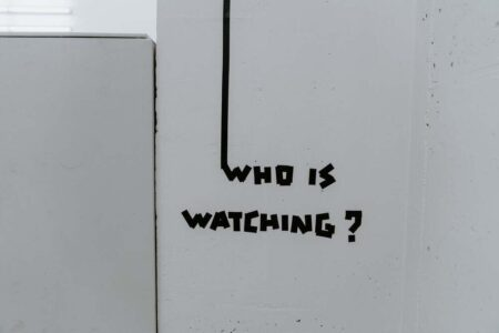 Little Brother is watching you back: Introducing Citizen 'Protect'